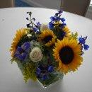 130x130 sq 1254792642434 sunflower