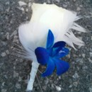 130x130 sq 1446054105092 blue oorchid feath bout copy