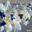 130x130 sq 1446054565320 blu orchid feather bouq copy
