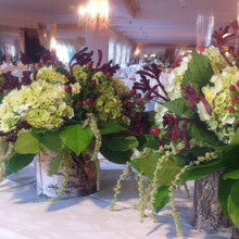 220x220 sq 1381777422419 birch wedding centerpieces thatched