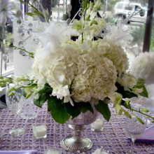 220x220 sq 1381781865126 hydrangea feather wedding centerpiece