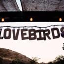 130x130 sq 1383109971224 lovebird