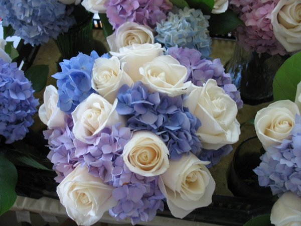 bridal bouquet of blue and purple hydrangea with ivory roses - Garden Rose And Hydrangea Bouquet