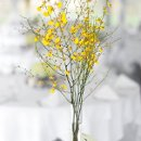 130x130 sq 1360956940438 yellowoncidiumorchidsbouldervase