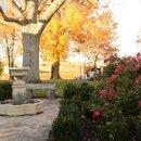 130x130 sq 1323612723582 rosegarden