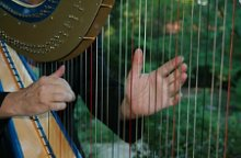 harpist Geoffrey Ricketts photo
