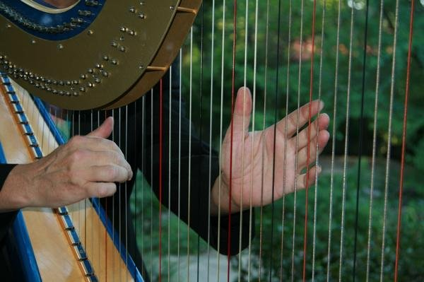 photo 1 of harpist Geoffrey Ricketts