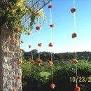 130x130_sq_1258149310000-orangerosestrands