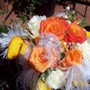 130x130_sq_1285620888637-orangeandfeathers