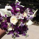 130x130_sq_1307192008665-purplelavender