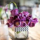 130x130 sq 1376438984385 daras purple tulip abd black and white chevron low centerpieces
