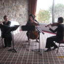 130x130 sq 1386182283425 ars elegante   flute violin cell