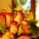 130x130_sq_1256771533053-wedding032