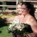 130x130_sq_1314653074190-bonsanteweddingbridesmaidbouquet2