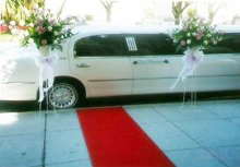 220x220_1263664472706-weddinglimo