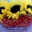 130x130 sq 1257177175347 flowers2