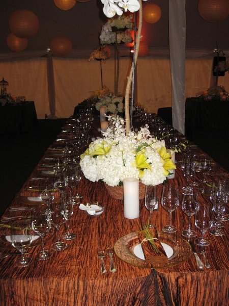 photo 17 of Alpine Party Rentals
