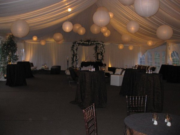 photo 19 of Alpine Party Rentals