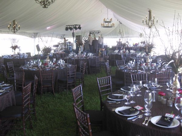 photo 20 of Alpine Party Rentals