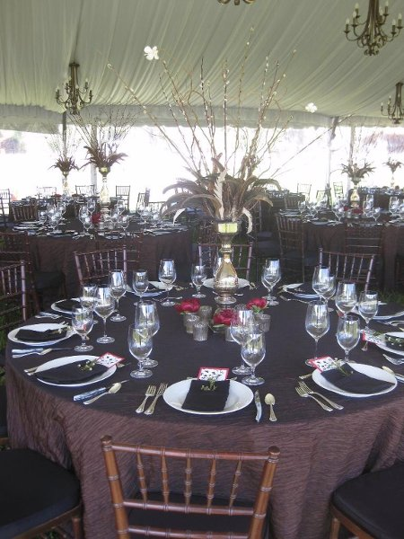 photo 28 of Alpine Party Rentals