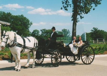 photo 1 of Buggies and Things Horse Drawn Carriage Service