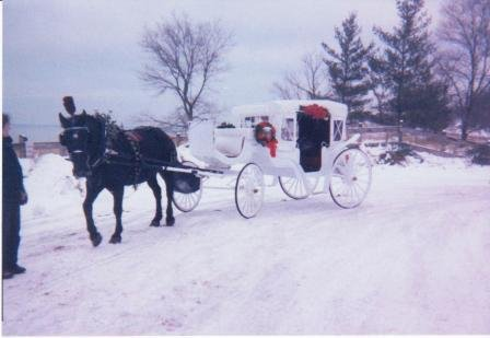photo 8 of Buggies and Things Horse Drawn Carriage Service