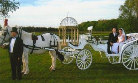photo 5 of Buggies and Things Horse Drawn Carriage Service