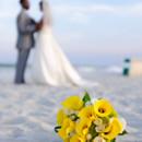 130x130 sq 1427656980429 wedding portrait flowers in focus ocean club grand