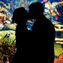 130x130 sq 1427821702104 silhouette at ripleys aquarium ripleys aquarium 20