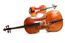 220x220 1257463802082 violincello