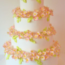 130x130 sq 1369228880289 wedding cakes nyc   cherry blossoms custom cakes