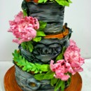 130x130 sq 1487106851374 engagement cakes nj   tree bark custom cakes