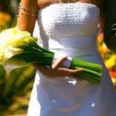 130x130_sq_1356121904025-casamentocyntiaerodrigo36
