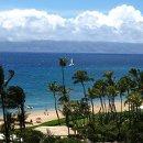 130x130 sq 1335405938263 hawaii5