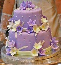220x220 1260134377988 purplelily