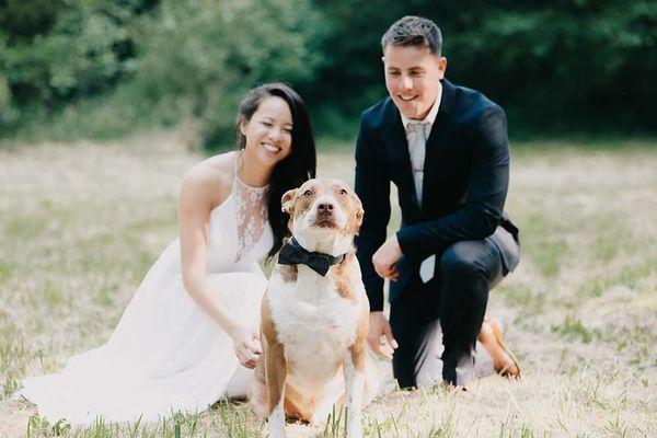 1523910058 023585b99fb55bd1 1523910057 418a9451021c089e 1523910036002 1 07.01.2017 Tram Le Tacoma, Seattle, Pacific Northwest + Destinations wedding planner