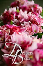 Designs in Bloom photo