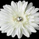 130x130 sq 1278610219306 diamondwhitestarburstdahliaflowerhairclip