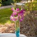 130x130_sq_1297742841949-orchid