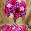 130x130_sq_1274315465546-rosetop