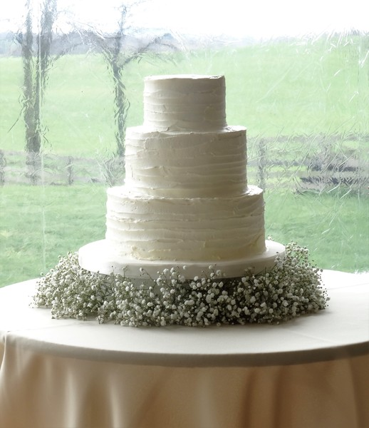 babys breath wedding cake sweet amp savory middletown md wedding cake 11002