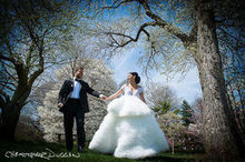 220x220 1494254817 c9fce6c40f504d34 brooklyn new york weylin b seymours wedding photographer chris