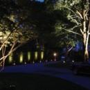 130x130_sq_1403673243937-uplightstrees