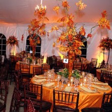 220x220 sq 1403673065674 fall wedding centerpieces image