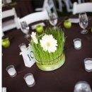 130x130 sq 1259877715024 wedding19