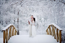 220x220 1416073919950 winter wedding bridge