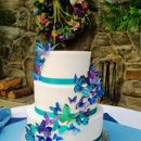 130x130 sq 1347846661147 butterflyweddingcakecloseupsept2012