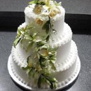 130x130 sq 1298051472049 cake100