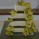 130x130 sq 1298051598971 cake26