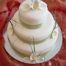 130x130 sq 1298052511877 cake40